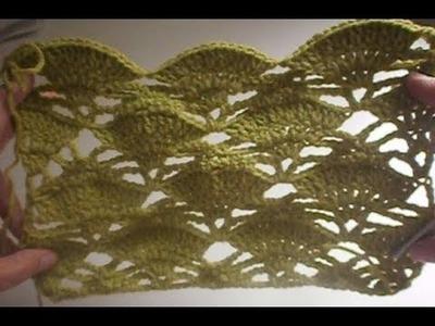 Fan Crochet Stitch
