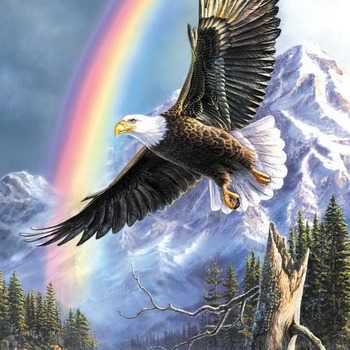 Eagle Rainbow Cross Stitch Pattern***LOOK***