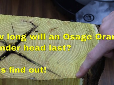 How Long will a (Wood) Osage Orange Cylinder Head Last?  Let's find out!