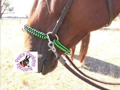 How to convert a leather bridle to a bitless side-pull bridle