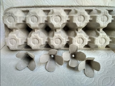 How to make flowers with egg carton