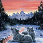 Twilight Song Wolf Cross Stitch Pattern***LOOK***