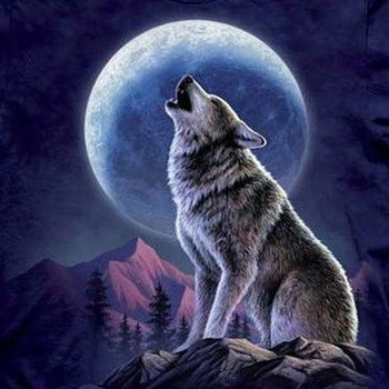 CRAFTS Wolf And Moon Cross Stitch Pattern***LOOK***$4.95