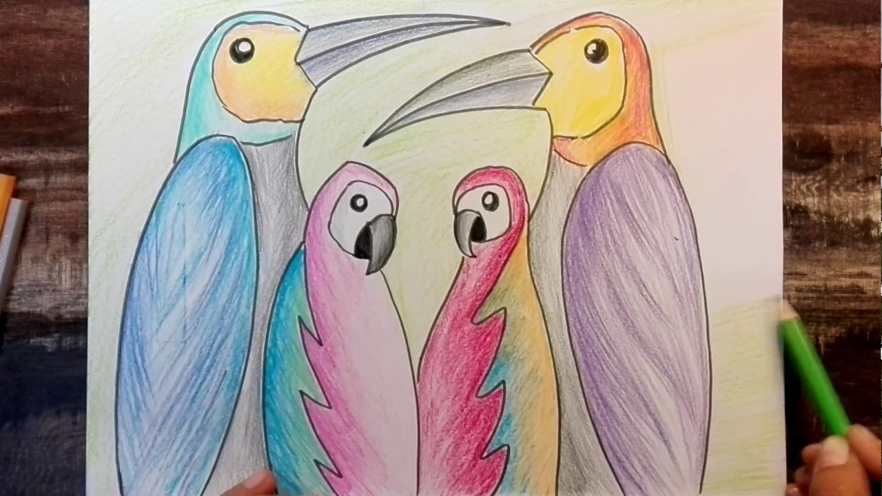 How To Draw Parrots Scenery Easy Using Pencil Colours