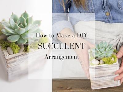 How to Make a Succulent Arrangement | DIY SPRING DECOR