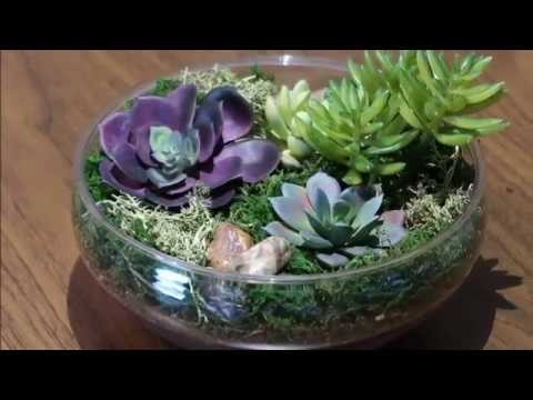 Dollar Tree DIY Faux Succulent Garden