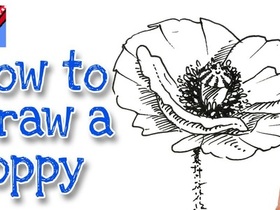 How to draw a Poppy Real Easy