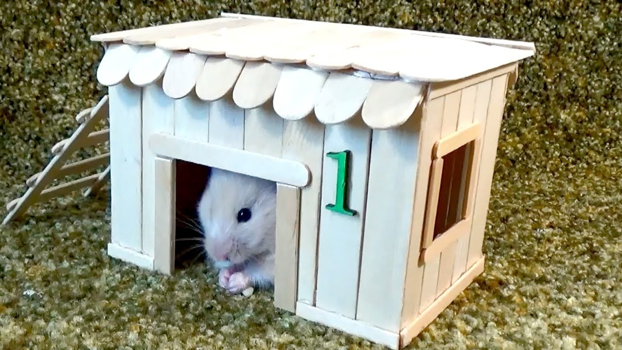 How to Make Little Hamster House – Very Easy & Quick DIY