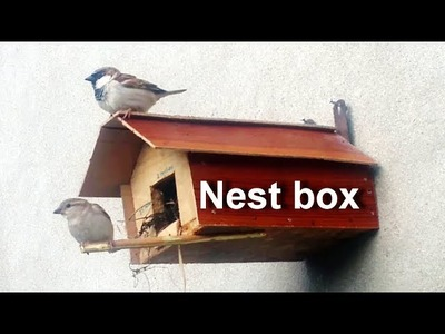 Bird House - How To Make A Bird House At Home - Birds Nesting Box