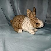 Tan Dutch Bunny