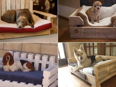 Fabulous Diy Pet Bed Ideas   Inspirational DIY Ideas for Pet Beds