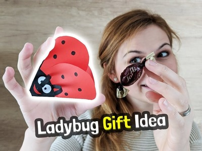 Ladybug Gift DIY Idea for Mother's Day
