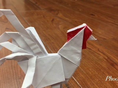 Origami: Peacock - Instructions in English (BR) - YouTube | 300x400