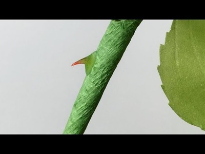ABC TV | 2 Tips - How To Make Thorns For Rose Paper Flower - Craft Tutorial