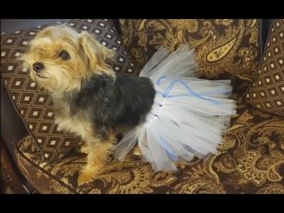 How to make a tutu for your dog. Falda de tulle