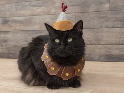 How to Sew a Roman Soldier Pet Costume