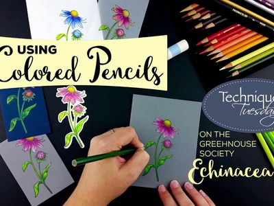 How to Use Colored Pencils on Dark Cardstock - Tips & Techniques Video - Technique Tuesday