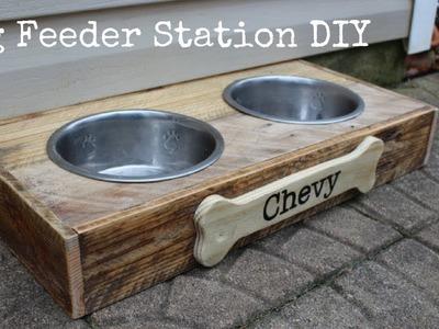 Dog Feeding Station DIY