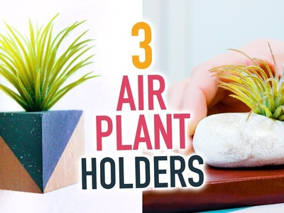 3 DIY Air Plant Holders ~ Cute Room Decorations! - HGTV Handmade