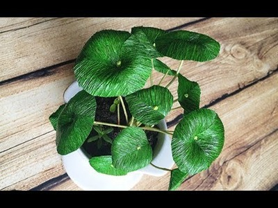 ABC TV | How To Make Chinese Money Plant From Crepe Paper - Craft Tutorial