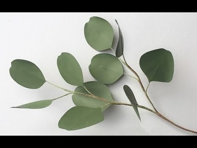 ABC TV | How To Make Silver Dollar Eucalyptus From Paper - Craft Tutorial
