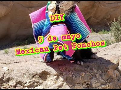 DIY 5 De Mayo pet ponchos