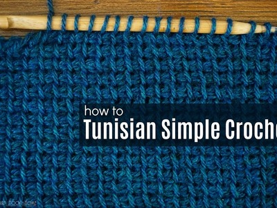 How to Crochet the Tunisian Simple Crochet
