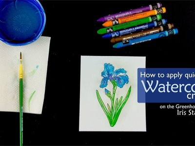 How to Apply Quick Color with Watercolor Crayons - Technique Video - Technique Tuesday