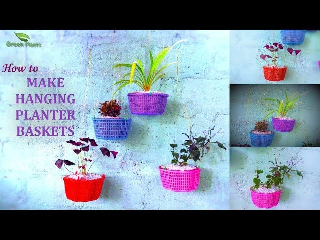 Make Hanging Planter | How to Grow Plants in Hanging Basket | Hanging Plants Ideas.GREEN PLANTS