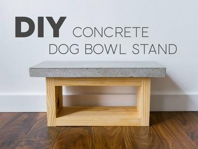 DIY Dog Bowl Stand | Concrete | Modern