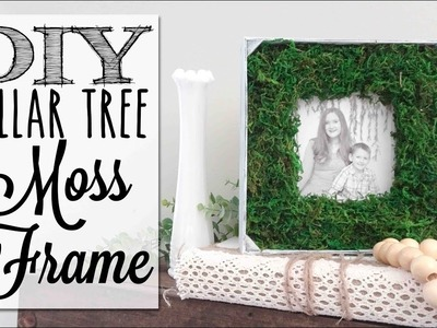 DIY Farmhouse Moss Picture Frame | Dollar Tree Craft