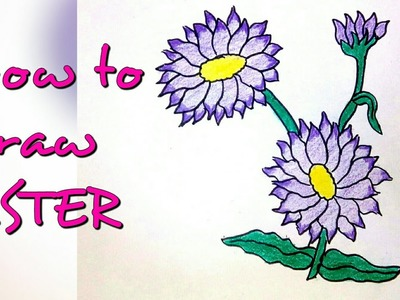 Drawing tutorial : how to draw aster flower | step by step | easy drawing [creative ideas]
